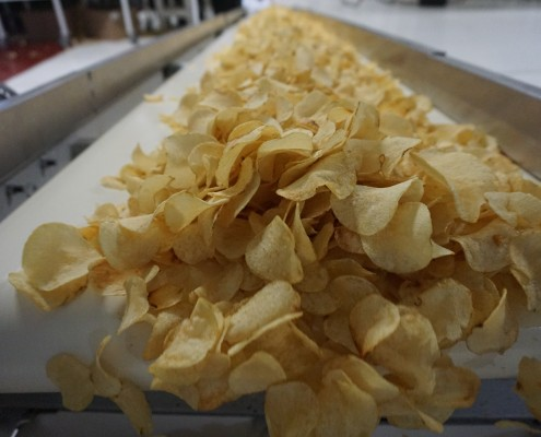 Chips coming off conveyor belt
